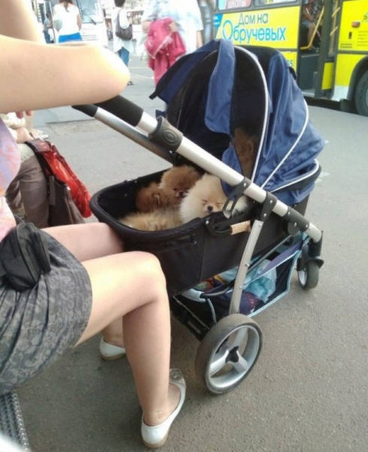Only In Russia, part 39