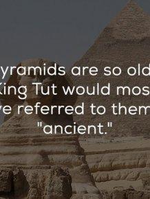 Odd History Facts
