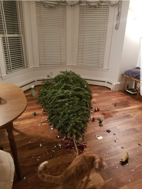 Really Bad Christmas