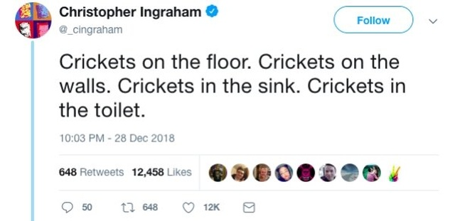 A Story About Crickets