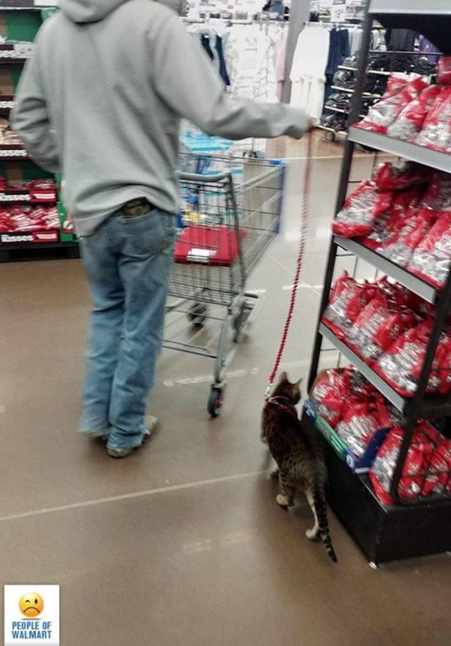 Only In Walmart, part 2