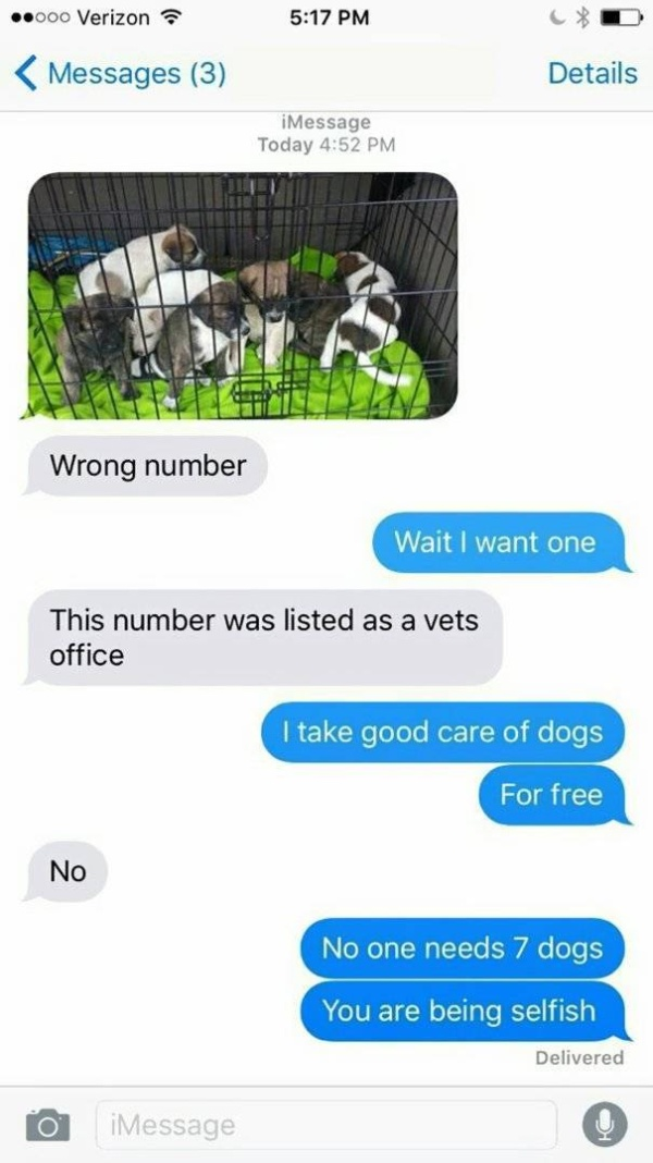 Wrong Number Texts Always Go Wrong