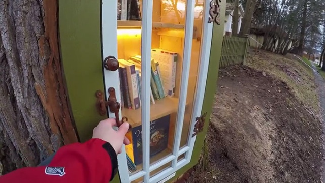 Woman Turned 110-Year-Old Dead Tree Into A Free Little Library