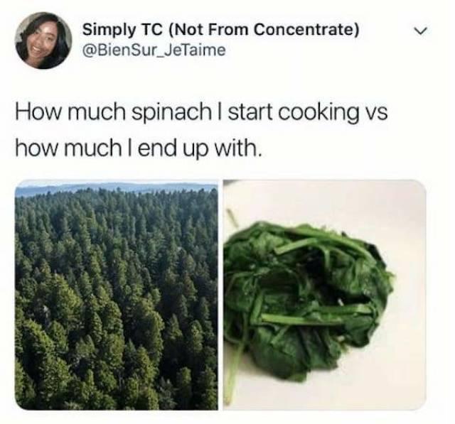 Food Memes, part 2