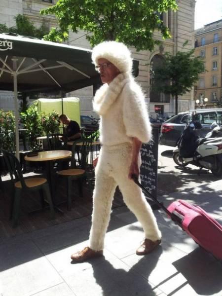 Incredible Fashion