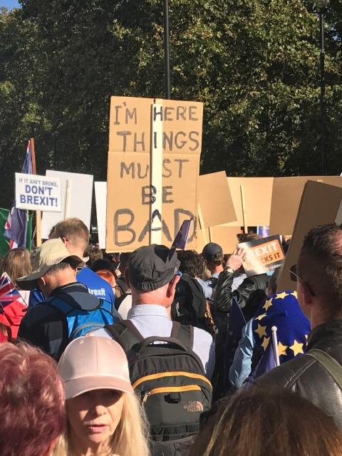 The Funniest Anti-Brexit Protest Signs