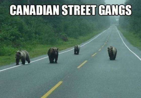 Only In Canada, part 6