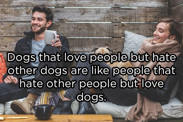 Shower Thoughts, part 61