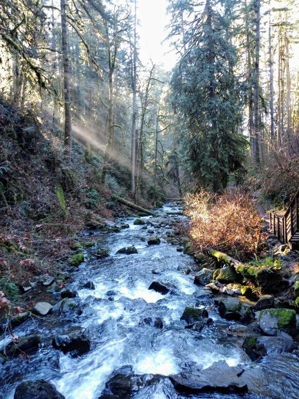 Beautiful Nature, part 7