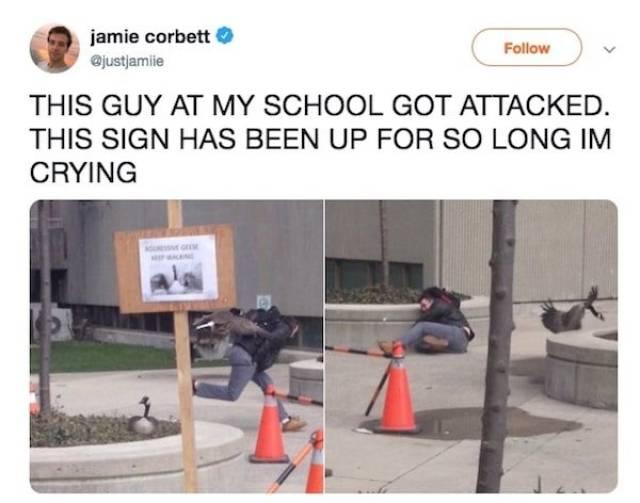 Student Fails