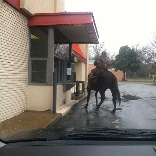 Only In The South