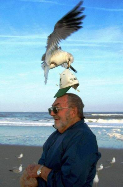 Perfectly Timed Photos, part 12