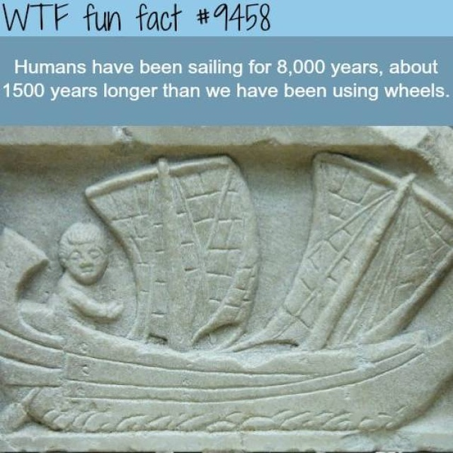 Interesting Facts, part 52