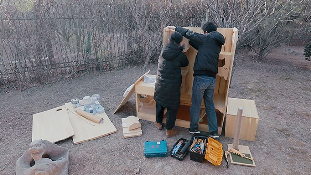 Chinese Engineer Builds An AI-Powered Shelter For Stray Cats That Has A Facial Recognition System