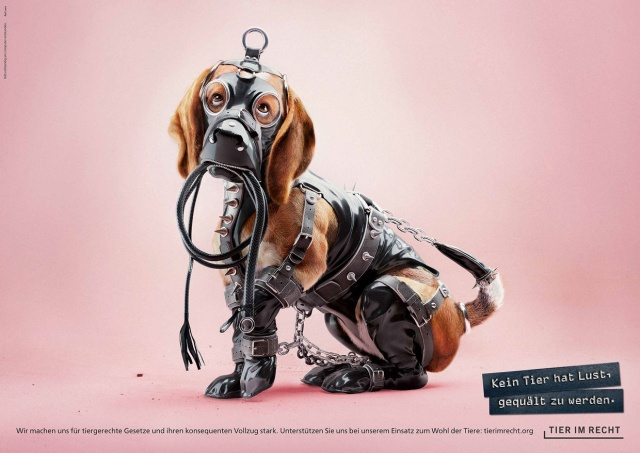 No Animal Wants To Be Tortured. Ad Campaign Against Animal Abuse