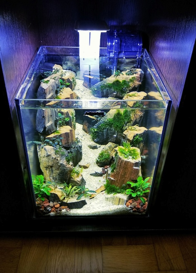 Making A Nice Aquarium