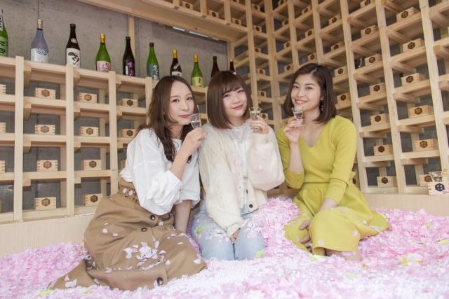 Cherry Blossom Bar In Tokyo