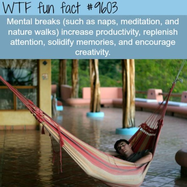 Another Selection Of Interesting Facts