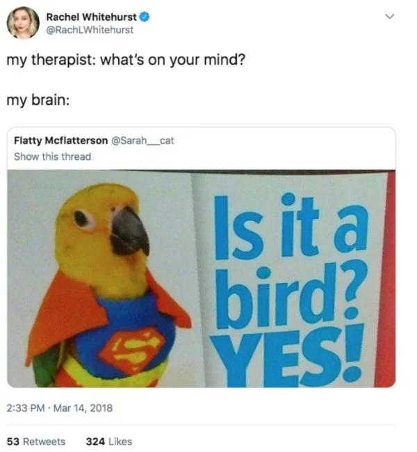 Memes, part 9
