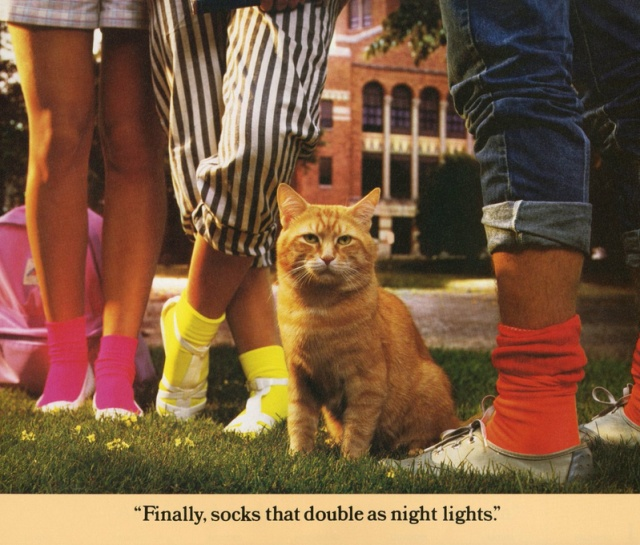 Vintage Calendar For 1986 With The Cat Morris