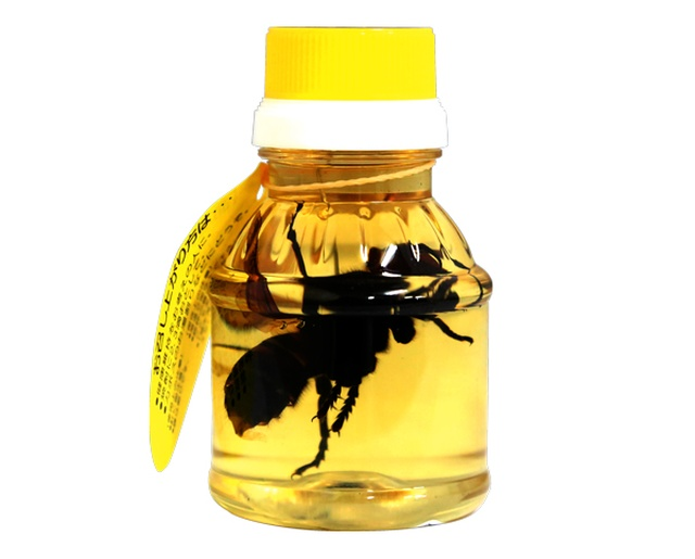 Honey With Hornets From Japan
