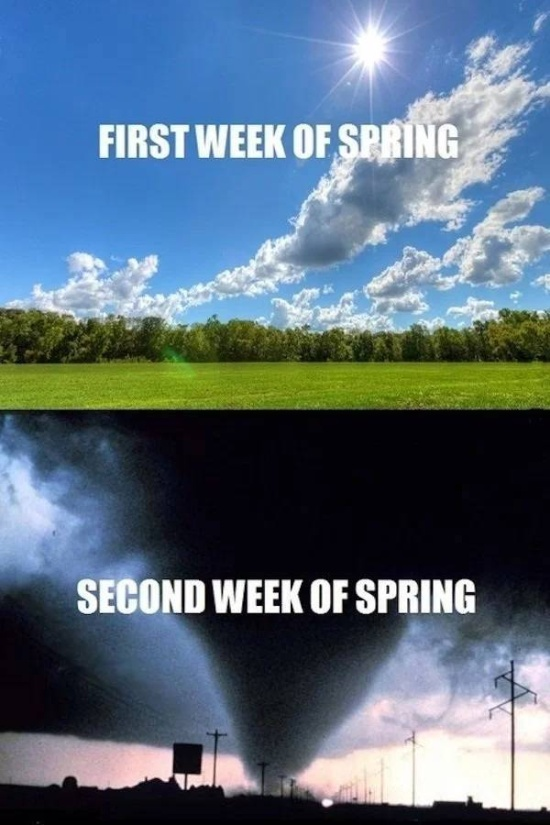Spring Is Coming Memes