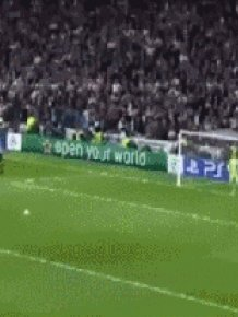 The Best Of Combined GIFs
