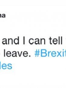 Funny Brexit Tweets