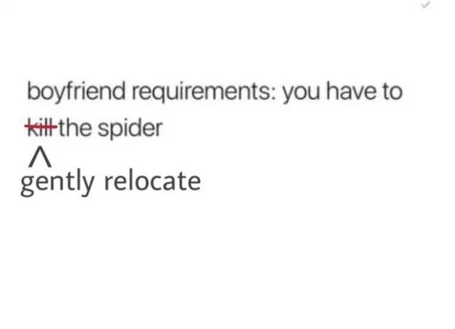 Spider Bros