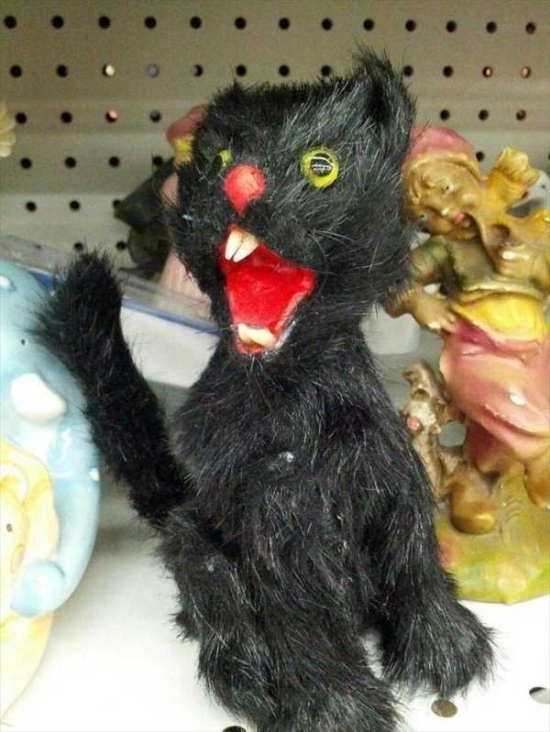 WTF Things Found In Thrift Stores