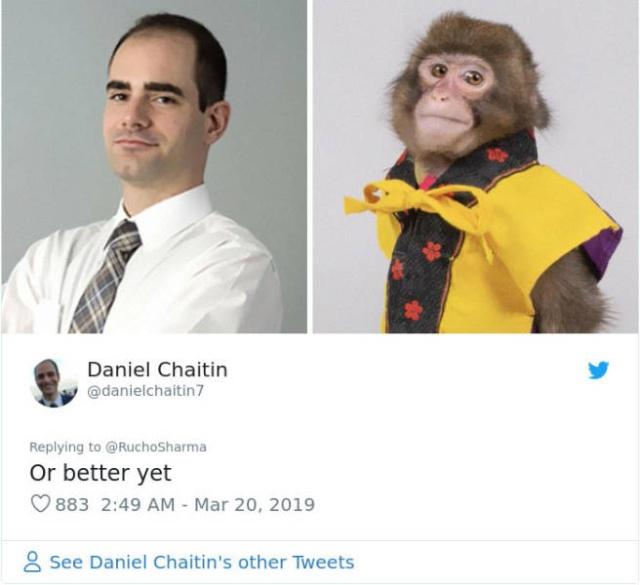 Monkey Looks Like A Journalist