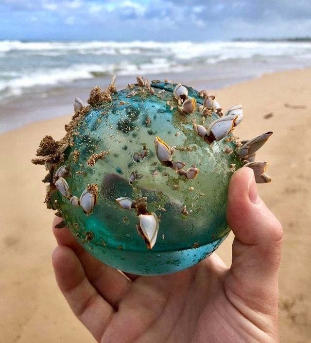 Found On The Beaches