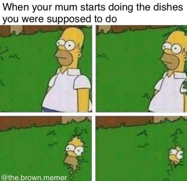 Cleaning Memes