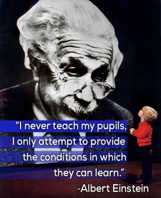 What Famous Minds Thought About Teaching