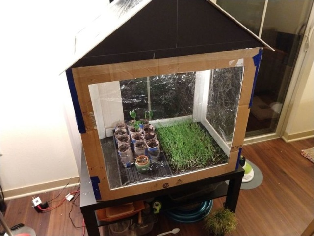 DIY Greenhouse From Cardboard Boxes