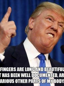 Funny Donald Trump Quotes