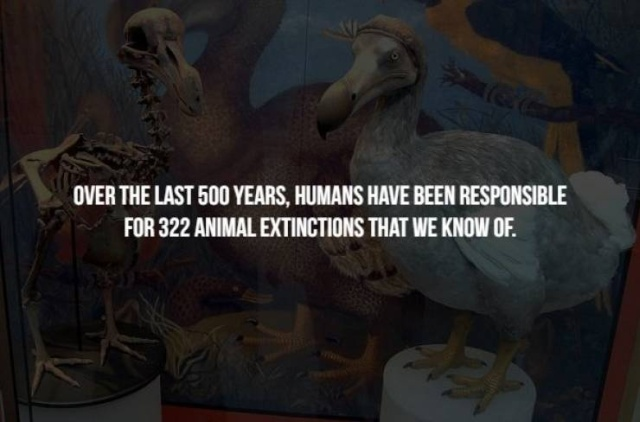 Scary Facts, part 40