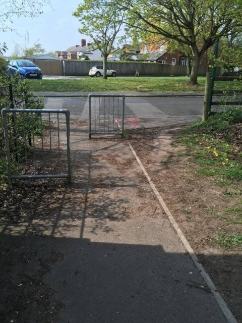Desire Paths Show How Lazy And Practical People Are
