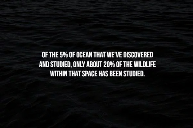 Scary Facts, part 41