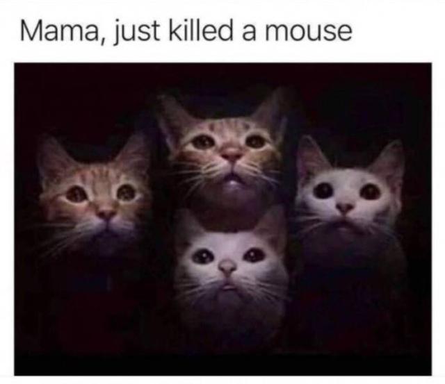 Very Funny Memes