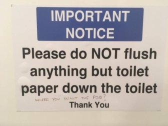 Funny Toilets
