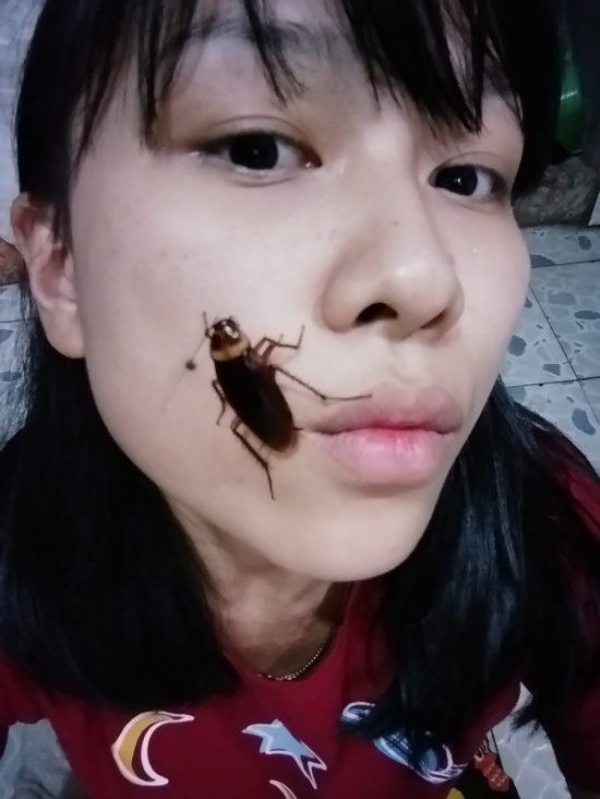 Selfie With Cockroaches On Face Is A New Challenge