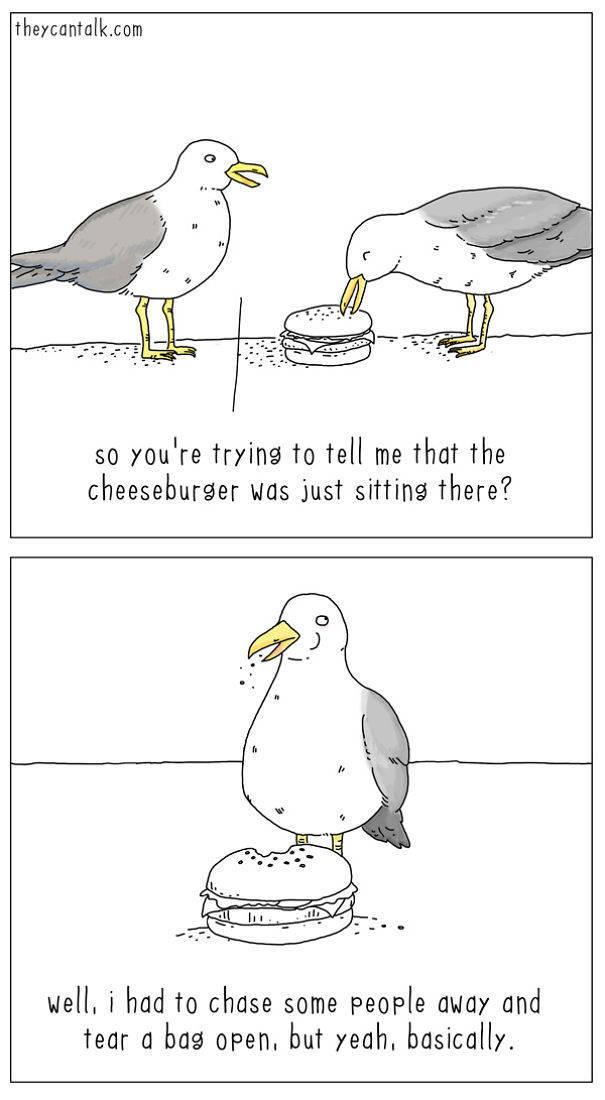 Artist Imagines What's Going On Inside Birds' Heads