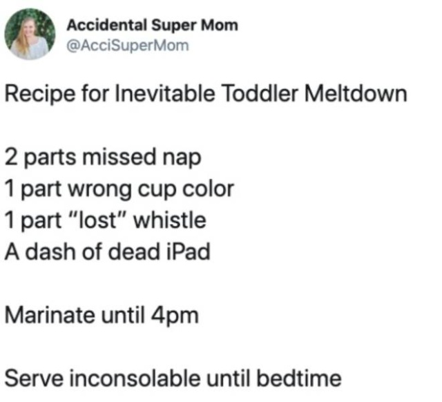 Very Funny And True Tweets About Toddlers