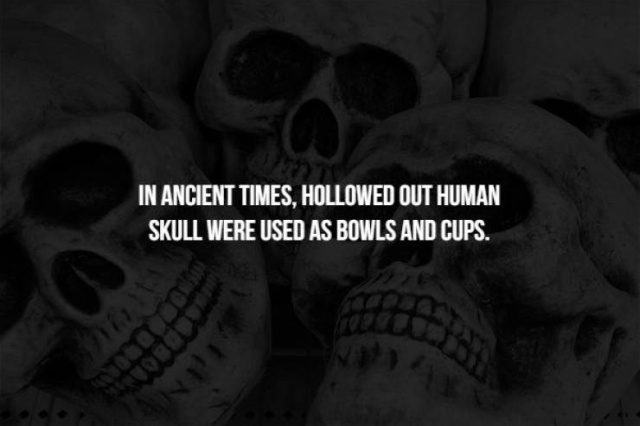 Scary Facts, part 42