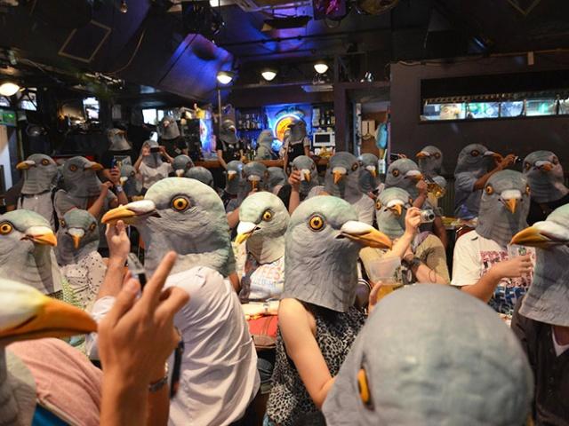 People In Pigeon Masks