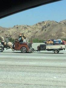 Strange Things Seen On The Roads