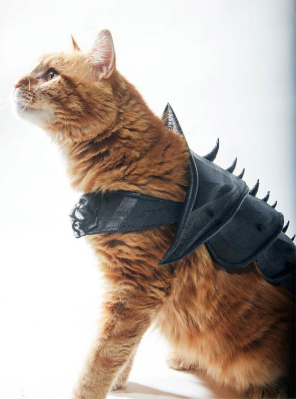 3D Printed Armor For A Cat