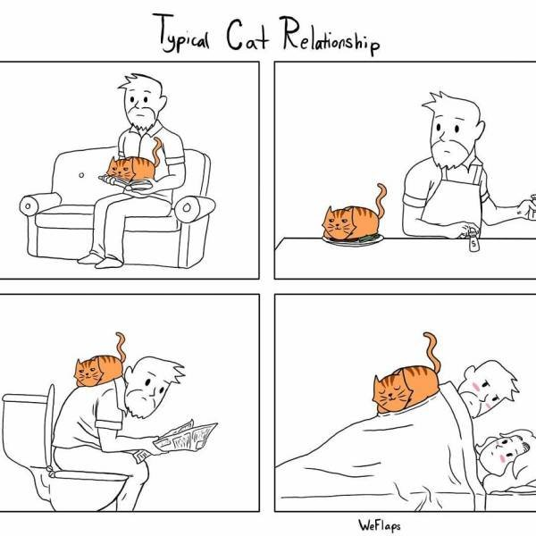 Funny Comics About Living With A Cat