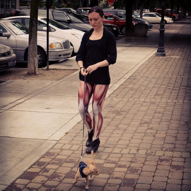 Muscle Leggings Is The New Trend